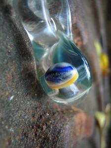 August Glass Mushroom Pendants (18)