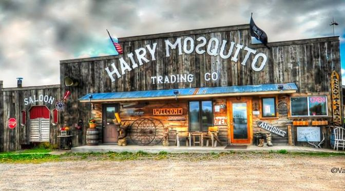 Hillbilly Days: July 29th-30th at The Hairy Mosquito